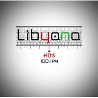 Logo of radio station Libyana hits