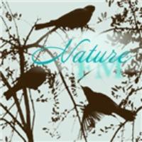 Logo de la radio Shurf Nature