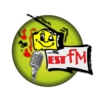 Logo of radio station Est FM