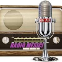 Logo of radio station Radio Mesići-B o s n i a.