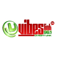 Logo of radio station Vibes Link 96. FM