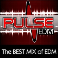 Logo of radio station PulseEDM