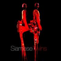 Logo de la radio SiameseTwins