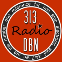 Logo of radio station 313 DBN Radio