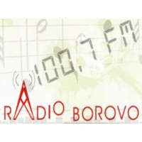 Logo of radio station Radio Borovo 100.7 FM