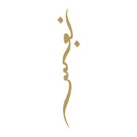 Logo de la radio NAFS RADIO