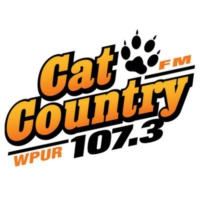 Logo of radio station WPUR Cat Country 107.3