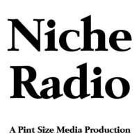 Logo of radio station Niche Radio