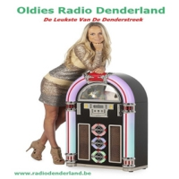 Logo of radio station Oldies Radio Denderland