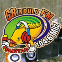 Logo of radio station Grindulu