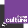 Logo of show La Chronique de Jean Birnbaum