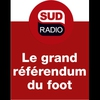 Logo of show Le grand référendum du foot