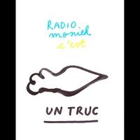 Logo de l'émission Vide de Radio Moniek