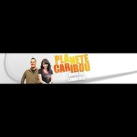 Logo of show PLANETE CARIBOU