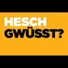 Logo of show Hesch gwüsst ?
