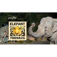 Logo de l'émission Elefant, Tiger & Co.