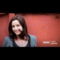 Logo de l'émission Lisa Gwilym yn Cyflwyno...