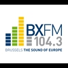 Logo of show BX BY NIGHT