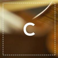 Logo of show Il concerto del mattino