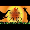 Logo of show Squirrel at the Zoo
