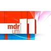 Logo of show MDR um 11