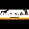 Logo of show Masterdog