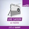 Logo of show Une saison au théâtre