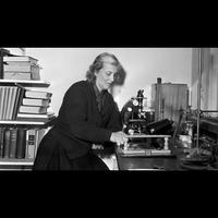 Logo de l'émission An Eye for Pattern: The Letters of Dorothy Hodgkin