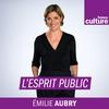Logo of show L'Esprit public