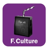 Logo de l'émission Les Séries musicales d'été