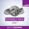 Logo of show Les Nouvelles de l'éco