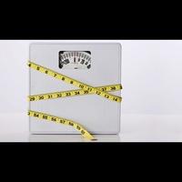 Logo de l'émission Fat Chance