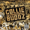 Couverture de l'album Collie Buddz
