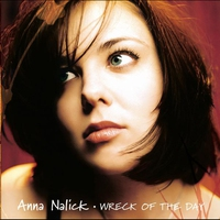 Cover of the track Wreck of the Day