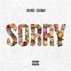 Couverture du titre Sorry (Ft Chris Brown)