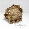 Couverture de l'album Cauliflower