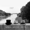 Cover of the album FAT