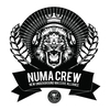 Couverture de l'album Numa Crew LP Sampler - EP