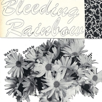 Cover of the track Waking Dream - Single