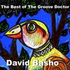 Cover of the album The Best of the Groove Doctor