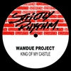 Couverture du titre King of My Castle (Sander Van Doorn remix)