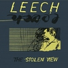 Cover of the album The Stolen View