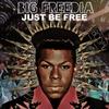 Couverture de l'album Just Be Free