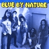 Cover of the album Blue to the Bone