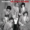 Couverture de l'album The Essential Paul Revere & The Raiders