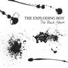 Couverture de l'album The Black Album