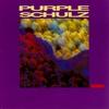 Couverture de l'album Purple Schulz