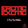 Cover of the album I Try to Hide - EP