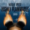 Couverture de l'album Highly Flammable