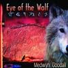 Couverture de l'album Eye of the Wolf
